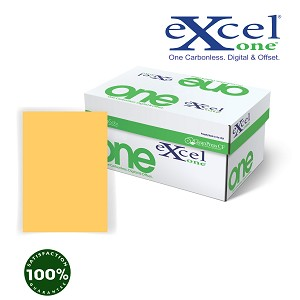 21# 8.5 X 11 EXCEL ONE DIGITAL/OFFSET GOLDENROD CF